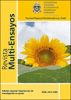 Ver 2021: Edición especial: Experiencias de investigación en pregrado
